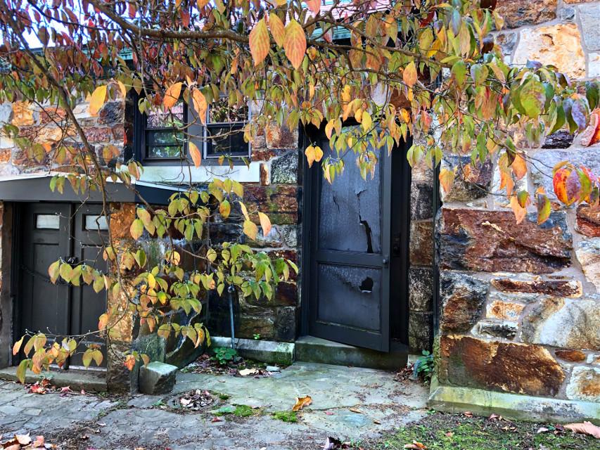 #freetoedit #hiddenplaces #doors #fall #autumn #autumnleaves