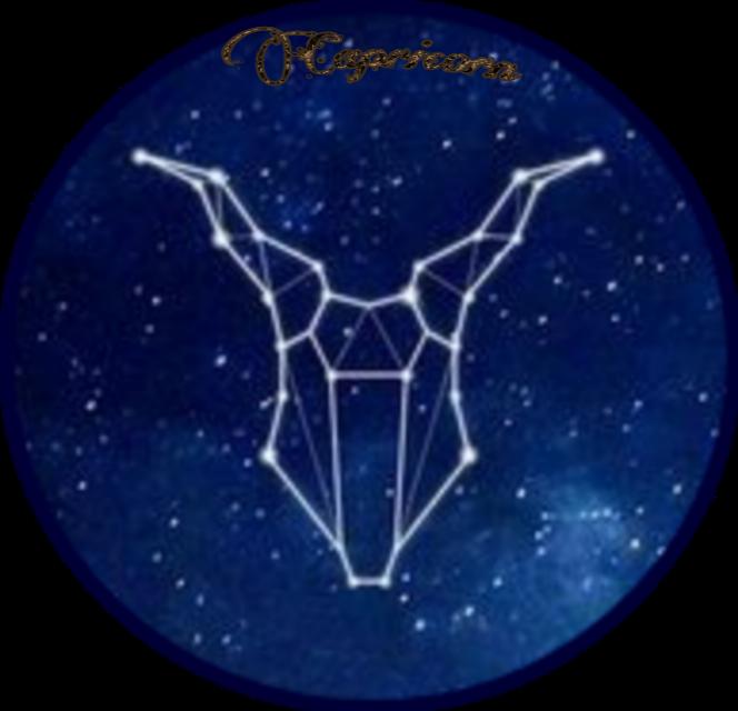 #Zodiacs#Capricorn#Stars#Space#Astronomy  #Constellations