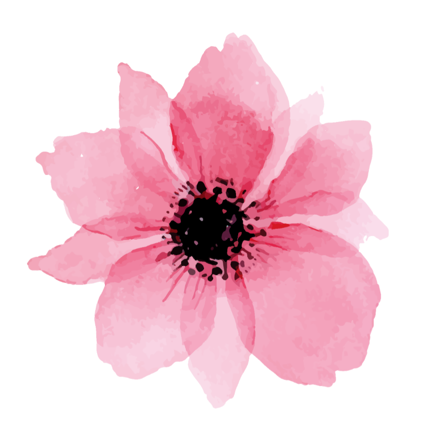 Bilderesultat for pink flower drawing