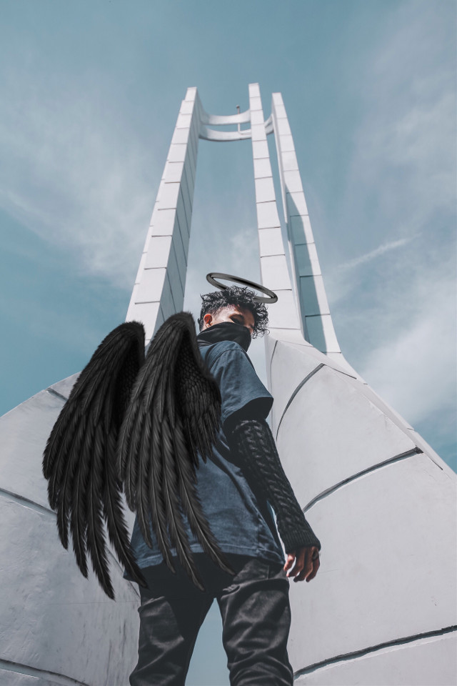 #freetoedit #wings