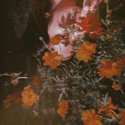 freetoedit flowerlover