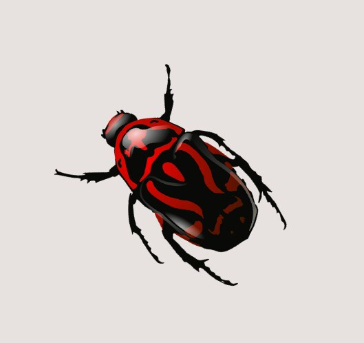 #scinsects #freetoedit #edit #edited #sticker #stickers #png #insects #natureza #nature #colorful #collage #cool #desafio #colors