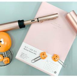 stationary bujo bulletjournal notebook journal