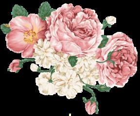 flower flowers aesthetic freetoedit