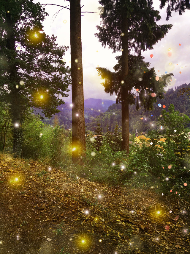 #freetoedit #magic #magie #background #forest #fairy #magicbackround #day #magical #magisch