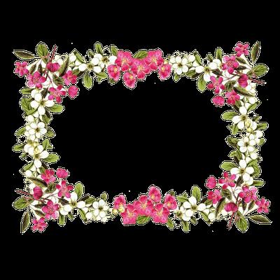 flowers frames flowerframe beautiful gorgeous lovely...