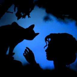 ircblackcat blackcat freetoedit