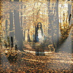 freetoedit scary frightening forest