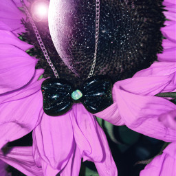 freetoedit pendy glass bow art