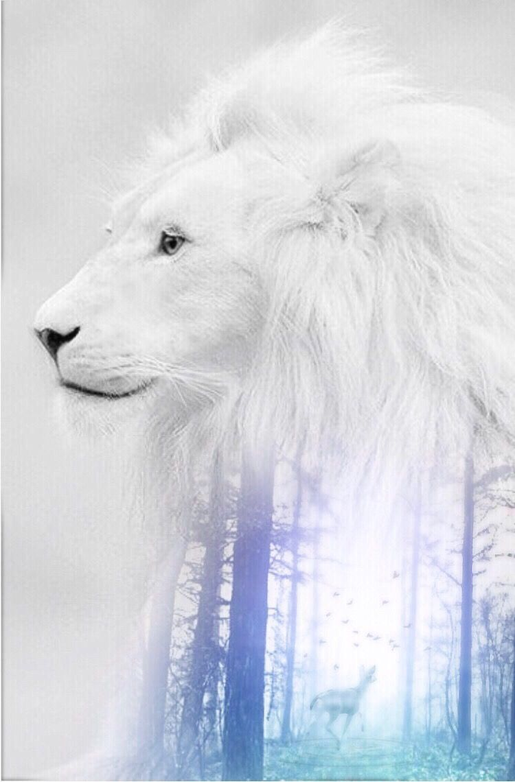 #freetoedit #interesting #madewithpicsart #whitelion #doubleexposure #myedit #forest #myart #art #lion      Happy end of Week to all 😘😘😘🤗