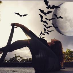 freetoedit yoga yogaeverydamnday yogachallenge art