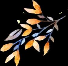 freetoedit orange blue leaf nature