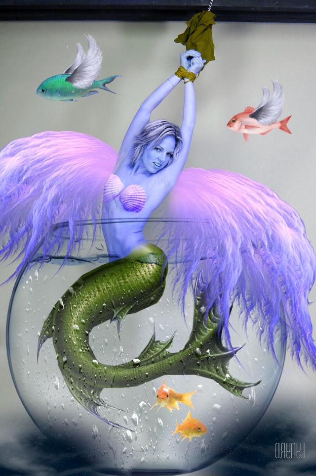 #freetoedit #fishbowl #mermaid #angel #fish #flying #fantasy #fantasyart #interesting #dream #myart #myedit #mystyle #madewithpicsart