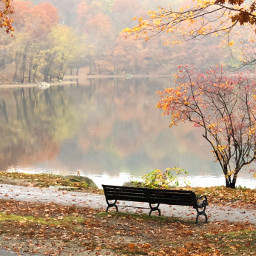 freetoedit view autumncolors pond bench pcreflection pcreflections reflections