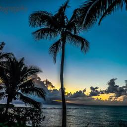 beachhouse sunsetonthebeach lovelynature travller hawaii