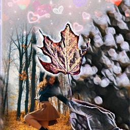 freetoedit осень любовь жизнь ircautumnleaf