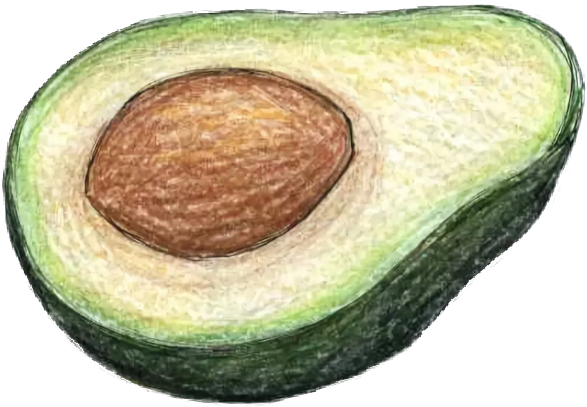 Картинки карандашом авокадо