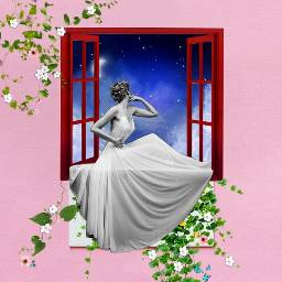 freetoedit desaf woman pretty window flowers nightsky
