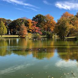 pcbeautifuldays beautifuldays reflections nature fallcolors freetoedit