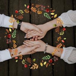 thanksgiving thanksgivingbrush thankful freetoedit