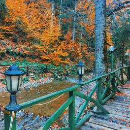autumn turkey turkobjektif travel travelphotography freetoedit