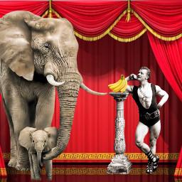 freetoedit circus strongman
