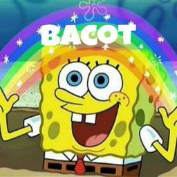 Popular And Trending Spongebob Meme Images On Picsart