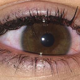 freetoedit red eye eyes redeye