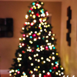 freetoedit christmastime lights tree