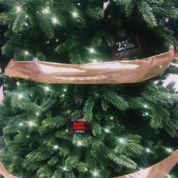 blackfriday sale christmas christmastree