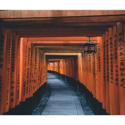 japan kyoto fushimiinari fushimi shrine landscape fujifilm vsco picsart