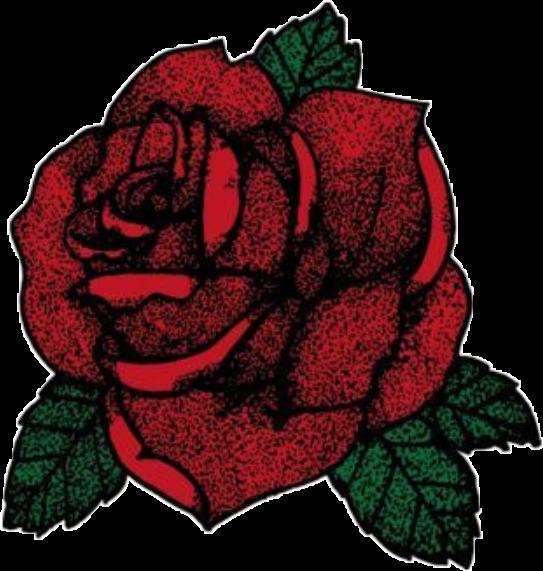 Red Flower Rose Tumblr Green Garden Plant Romantic