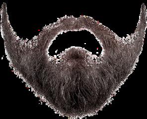 beard freetoedit