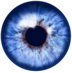 eye blueeye freetoedit