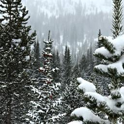 freetoedit winterpark colorado snowdayz mountainlyfe