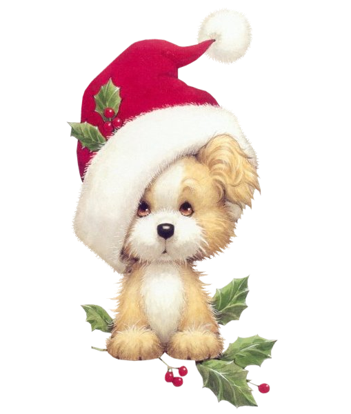 #dog #dogs #puppy #puppies #christmas #terrieasterly