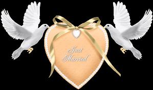 #bird #justmarried #wedding #white