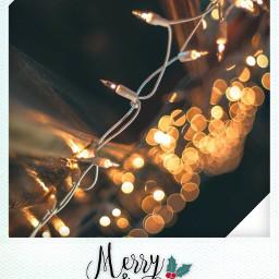 freetoedit christmas christmaspolaroids winter lights