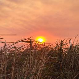 photography sunset grass clouds beautiful