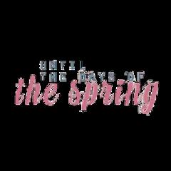 jimin quote btsquote springday jungkook freetoedit