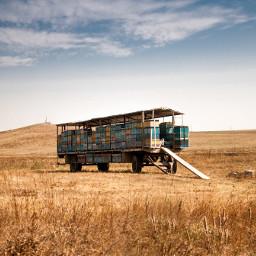 wagon nature freetoedit