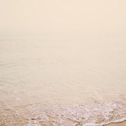 freetoedit nature endoftheday sunsettime beachscenery