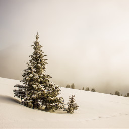 snow winter christmas background backgrounds freetoedit