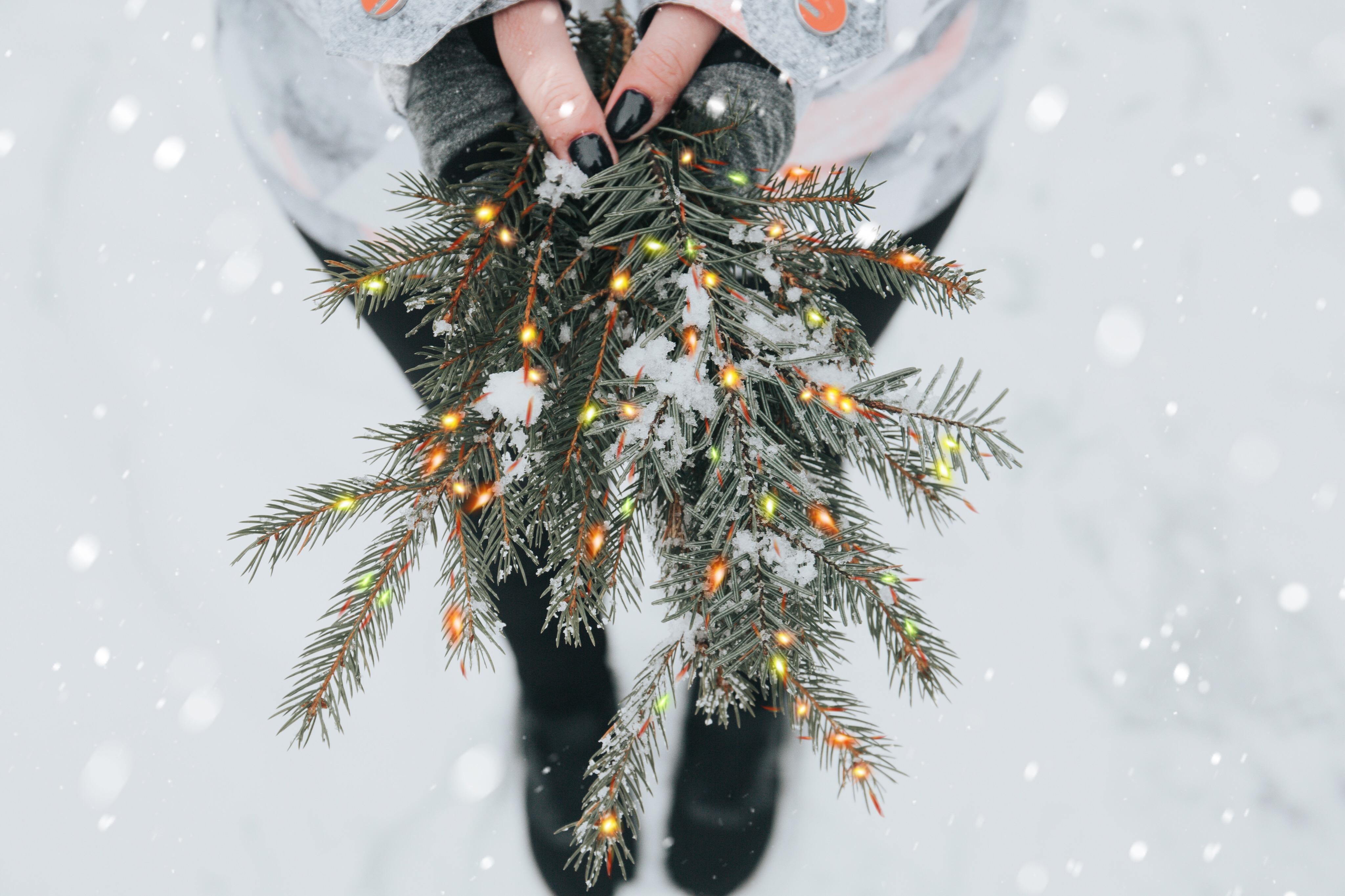 #holiday #christmasbrushes #freetoedit
