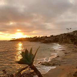 california travel beach lagunabeach sunset