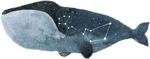 constellation constellations whale freetoedit scconstellation