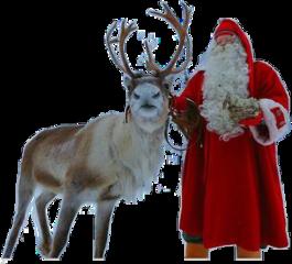 freetoedit screindeers reindeers