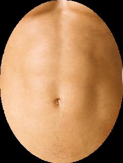 belly freetoedit