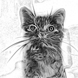 freetoedit cat witchescat kitten drawing scaredycat