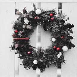 freetoedit mistletoe christmastree christmas